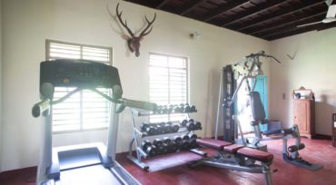 Ancestral Home Gym